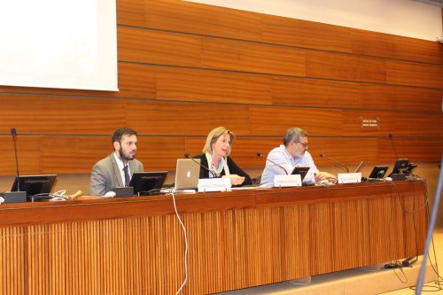 UNHRC Side-event: Gaza One Year on, the Great March of Return