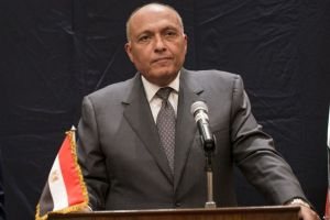 Egypt's FM Calls for Increasing Efforts to Relieve Palestinian Refugees' Suffering