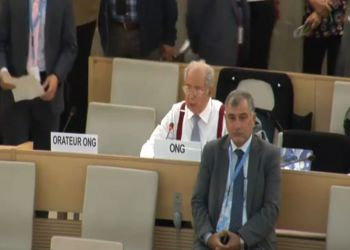 Abu Sitta: UNHRC Will Only Give Human Rights their Worth by Forcing Israel to Respect International Law